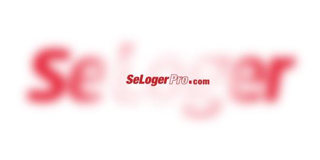 Seloger Pro